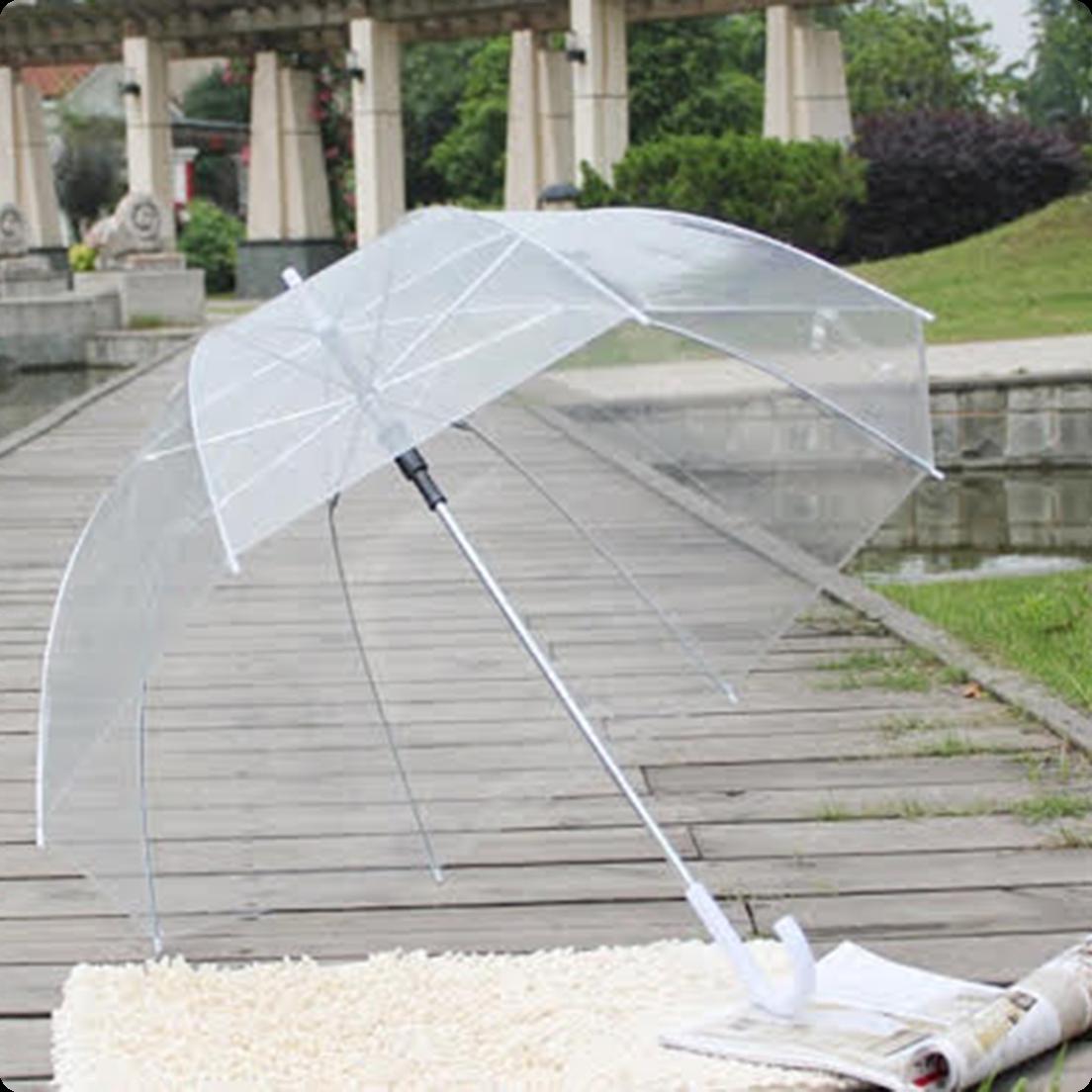 8caf48a3112e Clear Bubble Umbrella