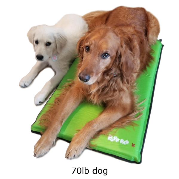 Hugs Puff Pad Self-Inflating Pet Bed